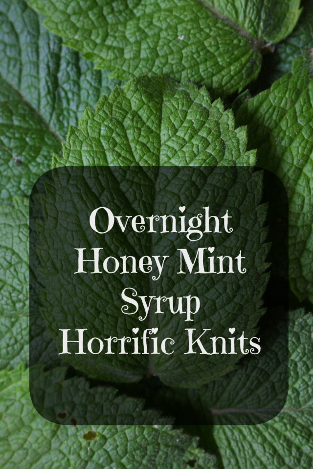 honey mint syrup