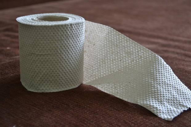 toilet-paper-313822_1280