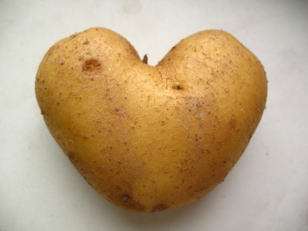 potato-165648_1280