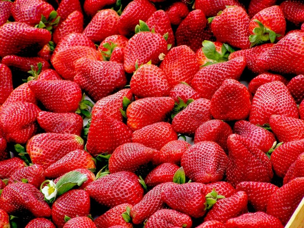 strawberries-99551_1280