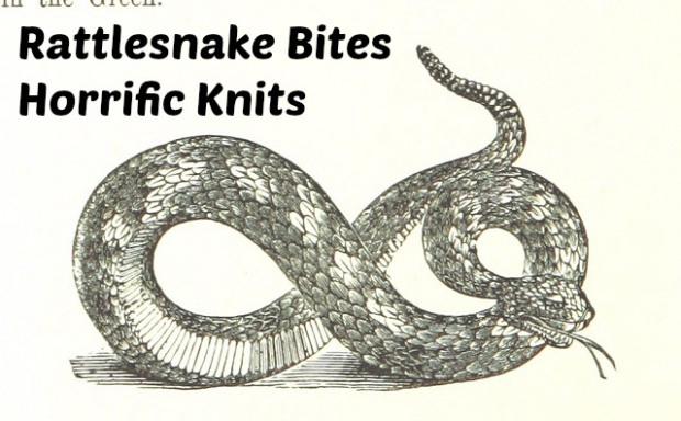 rattlesnake-bites-hot-beef-pockets