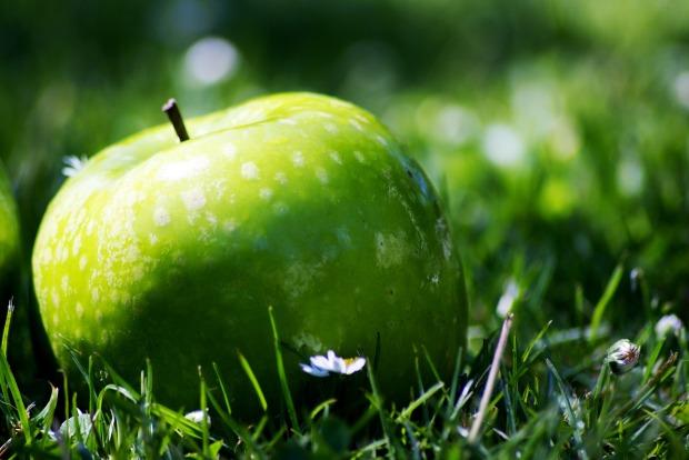 apple-947674_1920