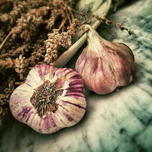 garlic-139659_1280